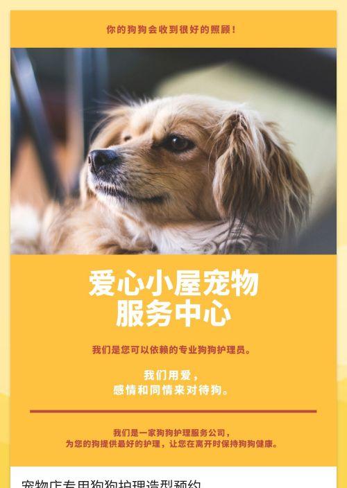 宠物店专用狗狗护理造型预约-模版详情-模版中心-金数据-在线预约模板-行业通用;美容模板